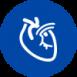 08_kardiologia-100x100